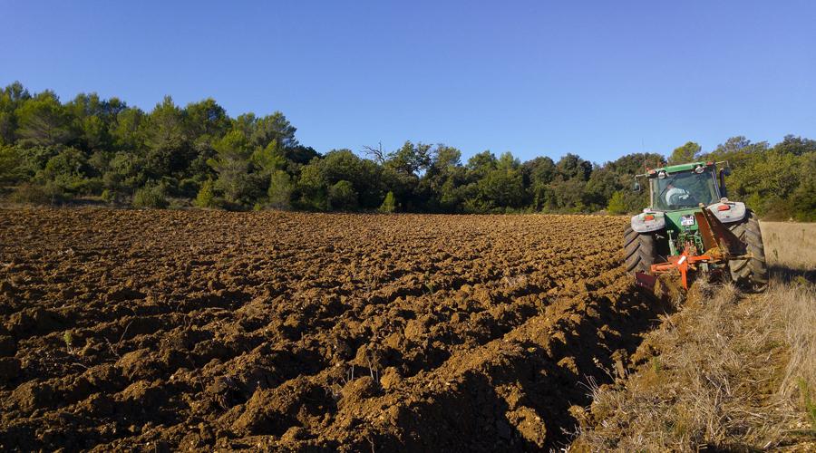 Piano concimazione, Gioia del Colle, agronomo, Nicola Giannico